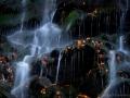 118_7736_01-Wasserfall im Harz